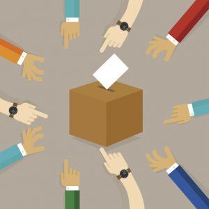 FSC Board Elections